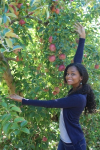 apples 265