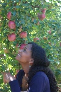 apples 268