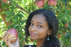 apples 279.