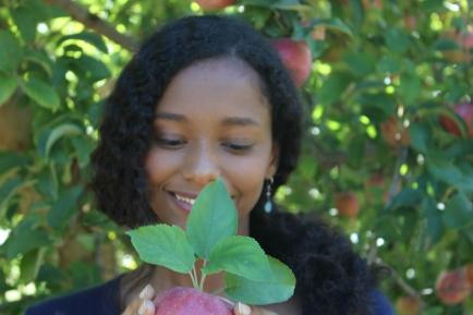 apples 285.